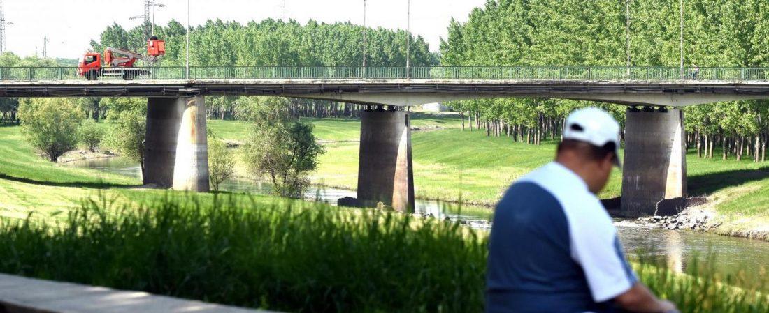 Zagyva-híd