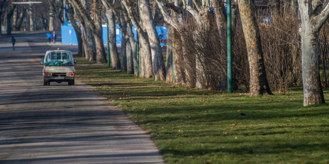 Növelik a zöldfelület arányát a Városligetben
